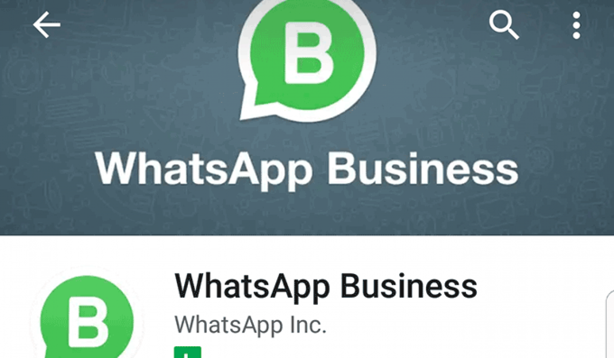 Desmistificando A Api Do Whatsapp Business